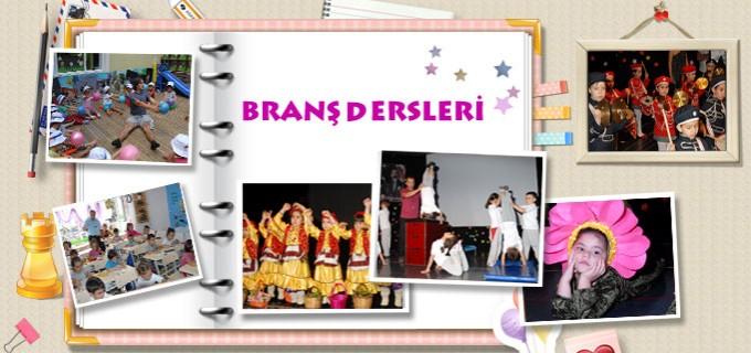 banner_brans